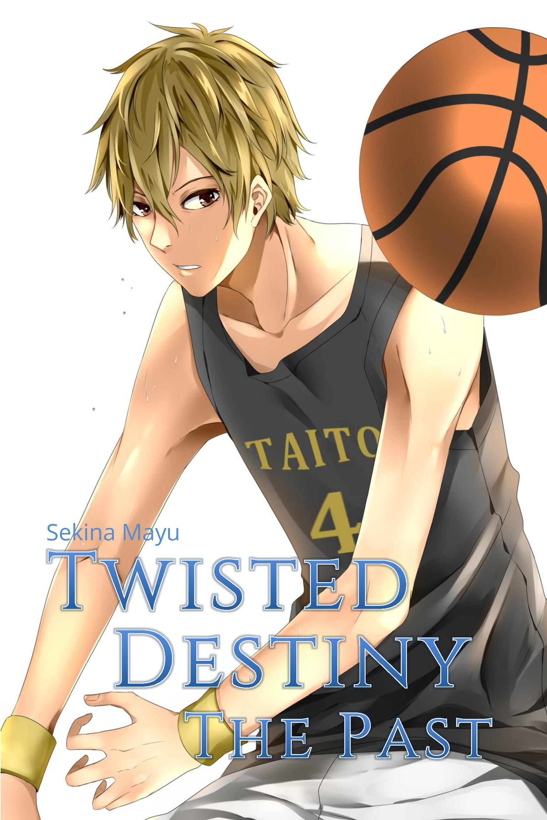 Twisted Destiny: The Past book cover